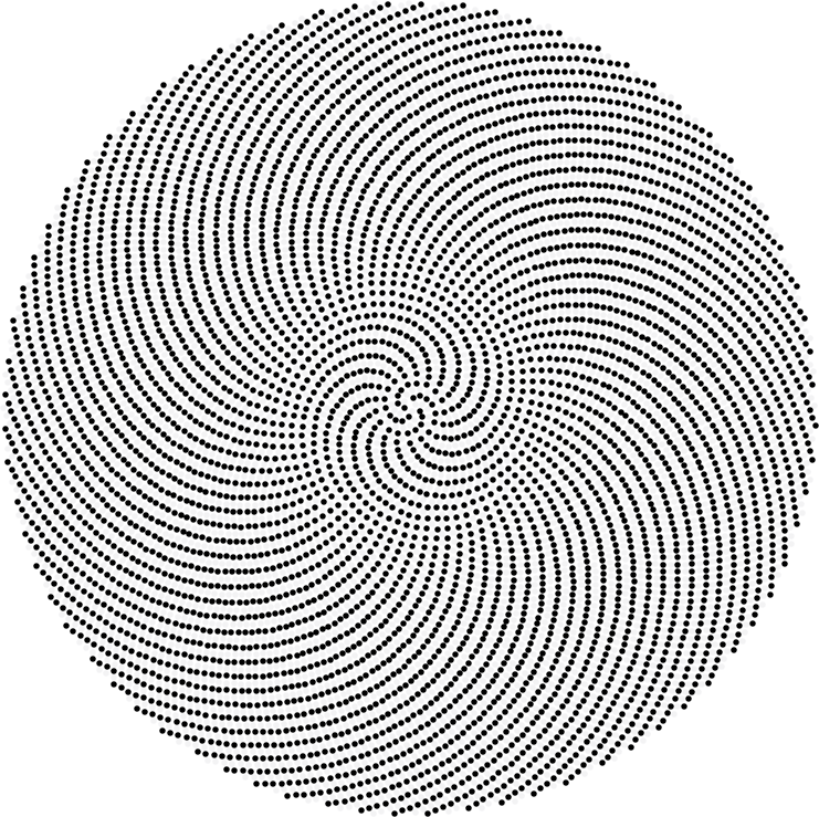 Prime Phyllotaxis Spirals | Maxwell\'s Demon