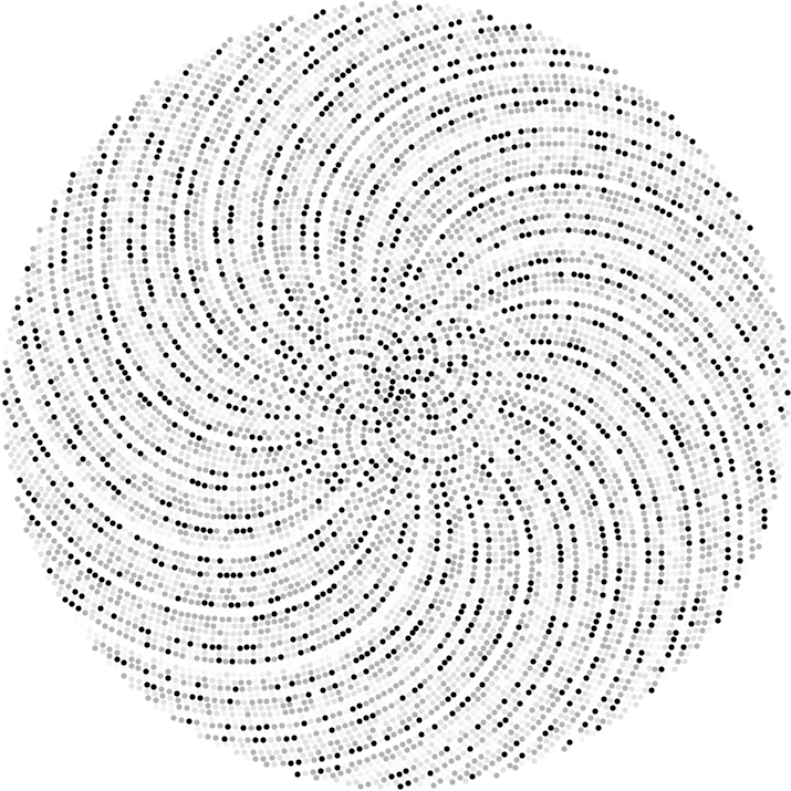 Prime Phyllotaxis Spirals | Maxwell's Demon